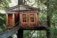 Cosy Cabins / by Shabnam