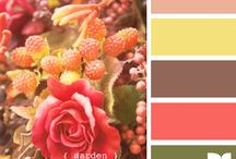Color Palettes / by Jennifer Clay