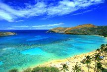 Maui On My Mind / by Marcie Reinhardt