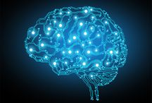 neuroscience / by Sonja Sivcev
