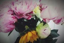 Flower garden et pois de senteur  / by Violette Blossom