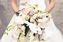 Real Brides / by Wedding Inspirasi