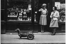Vintage Photographs / by Yvonne Kwok
