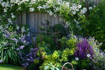 garden / by Sharon Stone Parisher