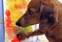 The crazy Dachshund lady / by Ashley Apolinar