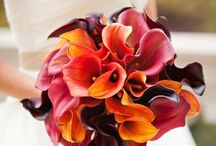 Wedding Flowers / Fantastic flower combinations for a fabulous wedding / by Sweetheart Bridal