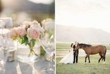 Dream Wedding / by Nicole Piovesan