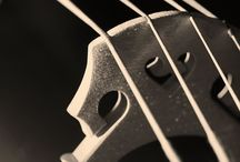 Cello / by Susan Siemens