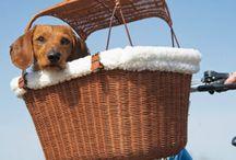 Basket liner / by Wendy Hartman