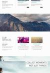 Design: WordPress Themes / by Danielle Primiceri