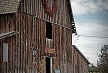 barns / by Ann Larimer