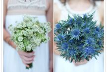 Bouquets and Centerpieces / by Beautiful Memories Cinematography