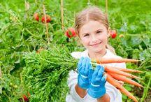 Growing veggies / by Tricia Herriman