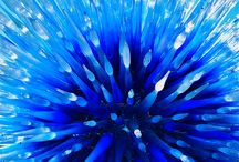 Blown / Dale Chihuly, the best at what he does!!!!     and others. / by Kathleen O'Connell
