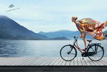 Bicycling - Luxe / by velojoy