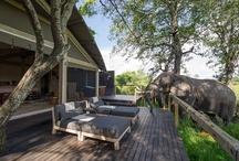 Bostwana / by Hotels & Villas Selection