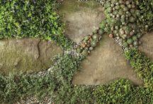 Secret Garden / by Junket: Tossed & Found