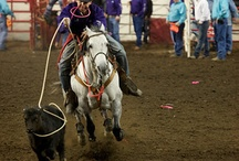 Rodeo / by Amy Meyer