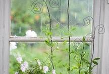garden goodies / by Aleta Ford