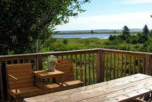 Family Fun Vacation / by Cabot Shores Wilderness Retreat