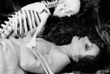 skeletons / by Sergio Ripardo