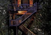 Home Sweet Home / by Molly Lockridge