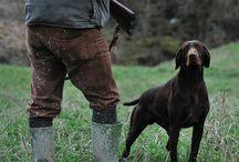 Dog Hunting / by Deer & Deer Hunting