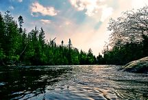 My Michigan / by Sheri Daniels