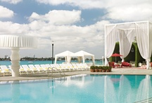 cool architecture /  life size chess set on the lawn of the delano hotel in miami / by Essential Coupon Book
