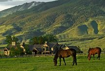 Montana Ranches for Sale / Open Fences, LLC is your one source for all your land needs whether you are a broker, buyer, seller, or land owner.  / by Open Fences Land Broker MLS