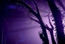 purplicous / by Selena Weinman