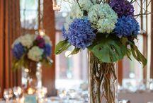 Flowers / by Carolyn Schilling