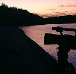 Nature & WIldlife FIlmmaking Articles / by Filmmaking Naturally