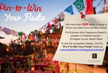 Pin It To Win Your Fiesta / Pin images of your dream Cinco de Mayo Fiesta for a chance to win more than $500 worth of Cinco de Mayo party items! Contest ends April 29th. See Full Rules here: http://esperanzaresort.com/cincodemayocontest.html   / by Esperanza Resort