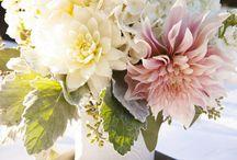 Flowers / by Christina Ho