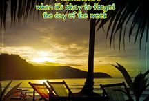 Travel Words of Wisdom / Travel quotes for the days when you need a little vacation inspiration.    / by Alamo Rent A Car