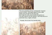 to know 4 biz / by marie adavi