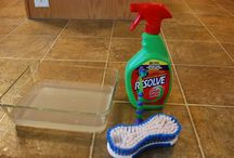 Cleaning ; household tips / by Tina Hoffman