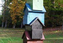 Animal, Birdhouses / by Gerry Teuben
