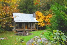 Cottages & Cabins / by Barb