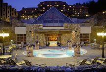 The Omni Grove Park Inn / by Omni Hotels & Resorts