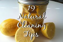 Cleaning Tips / by Veronica Croskrey