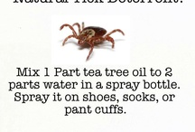 doTERRA essential oils  / by Sarah Beck