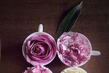 Flores / by Emy Bertran