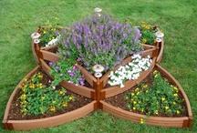 gardening ideas / by daniele bonneau