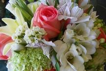 Wedding: Floral / by Megan Frank