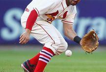 Cardinals / by Rex Berry