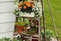 Gardening  / by Esmeralda De La Garza