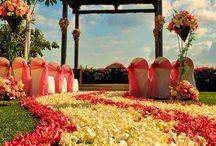 Future Wedding / by Amanda Metropoulos