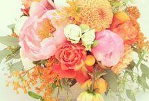 flowers / by Jody Willie